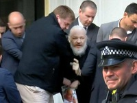 Lý do Ecuador cho phép bắt giữ ông chủ WikiLeaks