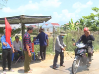 Khánh Hòa phòng chống dịch tả lợn châu Phi