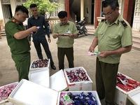 Lạng Sơn bắt giữ gần 3.800 kem hương vị trái cây nhập lậu từ Trung Quốc