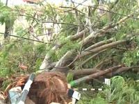 8 người thiệt mạng ở Ấn Độ do bão Fani