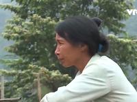 Hòa Bình: Người dân kêu cứu vì ô nhiễm trại lợn