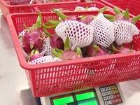 Nhiều trái cây lần đầu xuất khẩu chính ngạch sang Trung Quốc