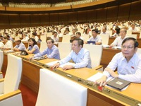 Revised tax management, public investment laws passed
