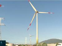 Phát triển nguồn nhân lực chuyên môn sâu cho ngành năng lượng tái tạo