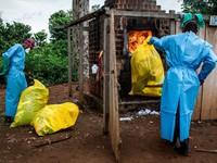 WHO: Dịch Ebola diễn biến ngày càng phức tạp tại CHDC Congo