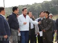 Hàn Quốc nỗ lực ngăn chặn dịch tả lợn châu Phi
