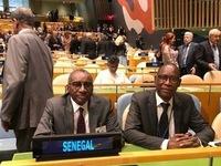 Senegal Ambassador: Vietnam attached to peace