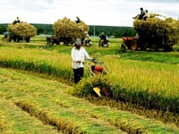 13 major national agricultural products announced