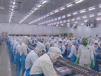 """Hiệp định EVFTA và EVIPA: Cơ hội """"vàng"""" để DN Việt bứt phá"""
