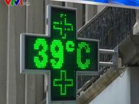Bỉ báo động đỏ vì nắng nóng kỷ lục