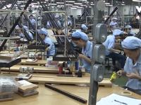 Nghị quyết 50 về thu hút vốn FDI: 'Cuộn chiếu hoa, lắp cửa từ'