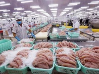 Vietnamese Tra fish  exports faces challenges