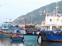 Bộ NN&PTNT cần gỡ vướng cho ngư dân đóng tàu theo Nghị định 67