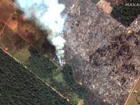 Pháp kêu gọi thảo luận về cháy rừng Amazon