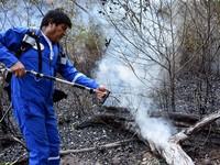 Tổng thống Bolivia và bộ lạc Amazon tự dập cháy rừng