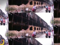 Vụ cháy Công ty Bóng đèn, Phích nước Rạng Đông: Ảnh hưởng từ thủy ngân ở mức độ nào?