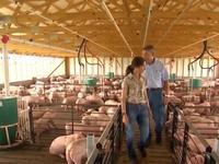 Nông dân Mỹ lo lắng khi Trung Quốc dừng mua nông sản