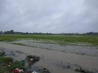 Đắk Lắk tập trung ứng phó mưa lũ