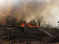 Thời tiết khô nóng ảnh hưởng đến nỗ lực dập lửa rừng Amazon