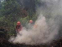 Indonesia đóng cửa một sân bay vì cháy rừng gây khói mù nghiêm trọng