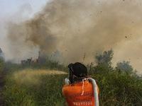 Cháy rừng tại Indonesia ảnh hưởng tới nhiều nước láng giềng