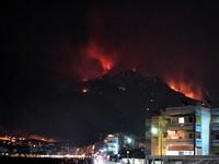 Cháy rừng gần thủ đô Athens, Hy Lạp