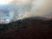 Brazil triển khai trực thăng kiểm soát cháy rừng Amazon