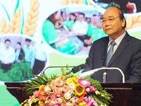 Hanoi's rural development outcomes comprehensive, impressive: PM