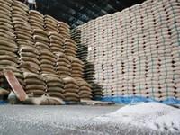 Xuất khẩu gạo của Thái Lan gặp nhiều khó khăn trong năm 2019