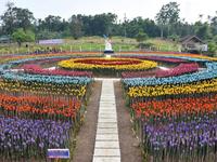 Thành phố Lamitan biến rác thải nhựa thành hoa tulip