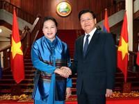 Vietnamese top legislator meets Lao Prime Minister