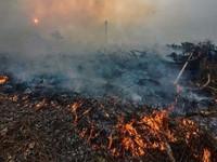 Indonesia tăng ngân sách dập cháy rừng