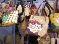 Phong trào xách giỏ đi chợ thay túi nylon ở Đồng Tháp