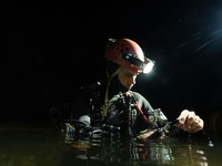 Divers rescuing Thai soccer team make new discovery in Son Doong Cave