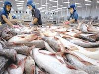 Tra fish exports to US, China decline