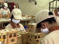 Social enterprises on the rise in Vietnam