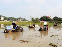 """Going to the field' festival in Pho Yen"