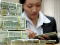 Vietnam's foreign exchange reserves continue to rise