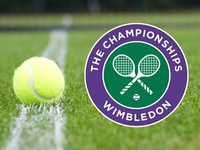 In 2019, VTVcab owns rights of world 3 biggest tennis tournaments