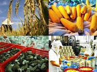 2018 - a year of records for the vietnamese export sector