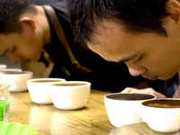 Vietnam's specialty coffee competition 2019