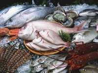 Aquaculture products imported into ASEAN to reach $US1bln