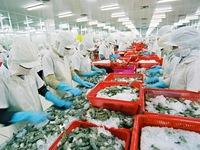 Shrimp industry seeks opportunities to boost export to US