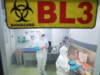 Bệnh nhân đầu tiên tử vong do bệnh viêm phổi virus mới ở Vũ Hán (Trung Quốc)