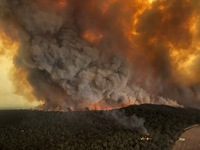 Cháy rừng tiếp tục bùng lên ở Australia