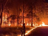 Cháy rừng tại Australia vượt tầm kiểm soát
