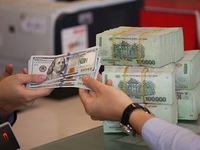 Promoting disbursement of 12.8 billion USD credit support program