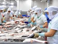 U.S cuts import tax on Vietnamese Tra fish