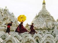 Vietnamese photographers win big at India's photo contest