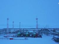 Việt Nam - Liên bang Nga hợp tác khai thác dầu khí